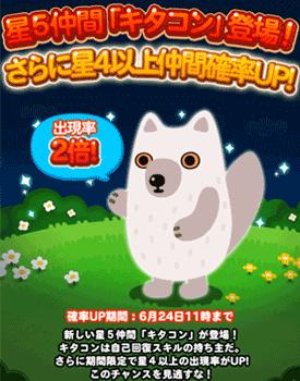 ポコポコ星5動物【キタコン】が新登場!